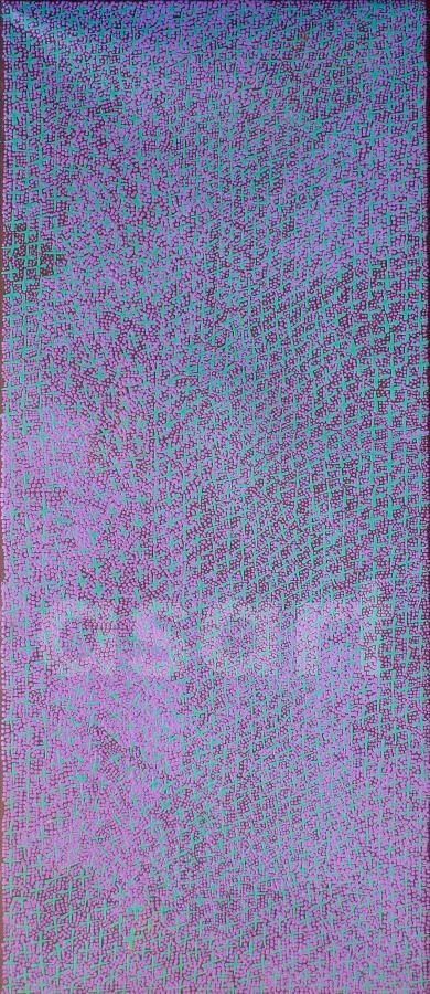 Ngatijirri Jukurrpa (Budgerigar Dreaming), by Aboriginal artist Lorraine Nungarrayi Granites (Australia)