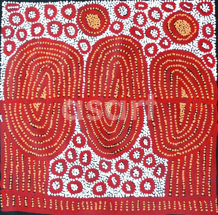 Ngamurru Dreaming, by Aboriginal artist Yinarupa Nangala (Australia)