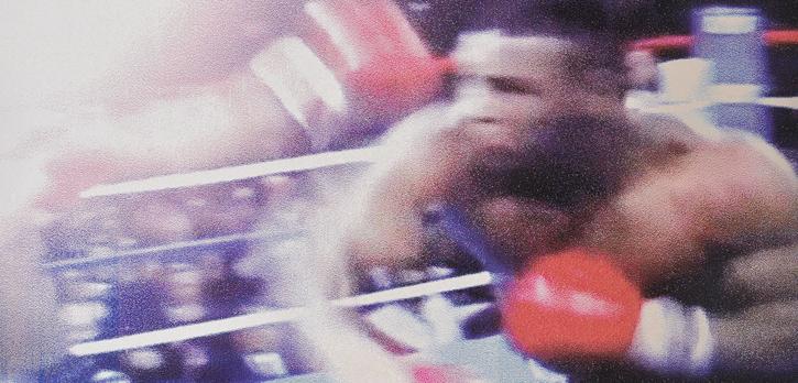 Tyson, by international artist Douglas Stewart (Canada/United States)
